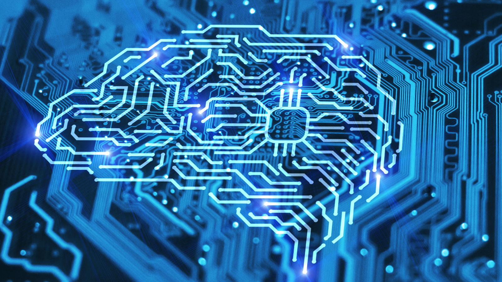 Une représentation d'un cerveau fait de réseau informatique