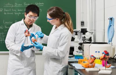Un étudiant montrant quelque chose à une autre étudiante dans un laboratoire