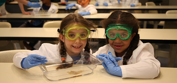 Kids perform a dissection with colourful safety glasses!