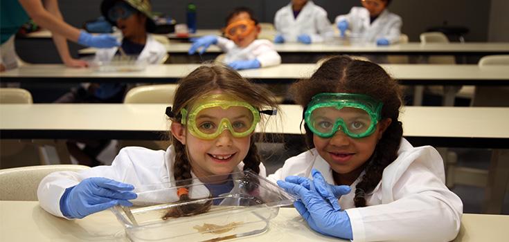 Des enfants à un camps faisant un projet de dissection