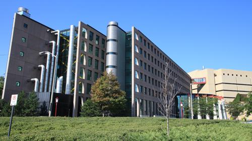 Site building